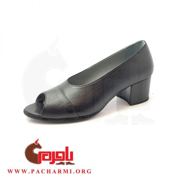 Pacharmi-high-heels-shoes-Atrin-1