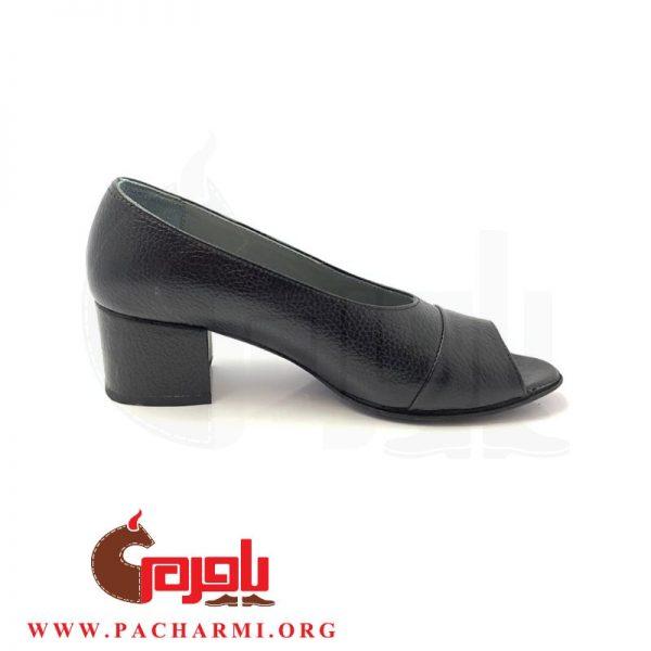 Pacharmi-high-heels-shoes-Atrin-2