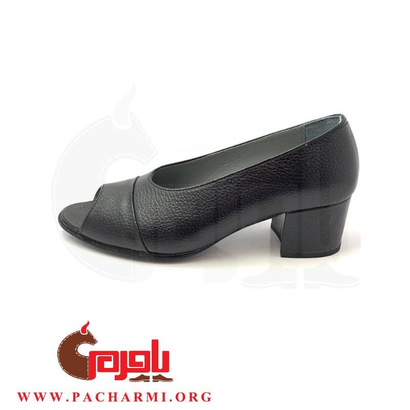 Pacharmi-high-heels-shoes-Atrin-3
